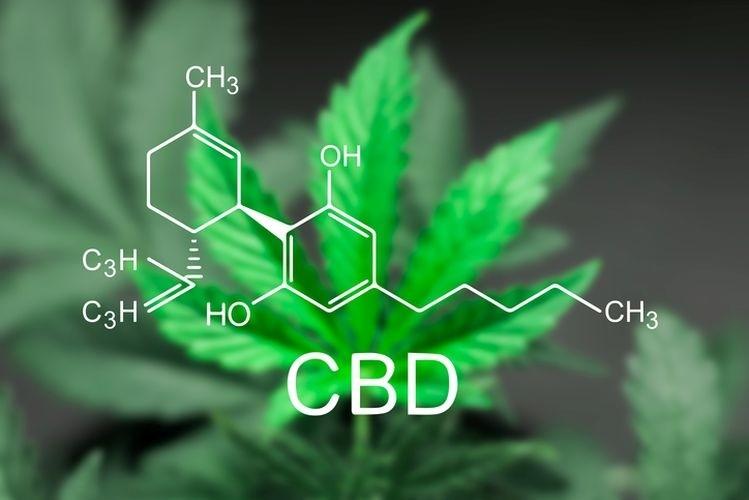 CBD En alkaloid från cannabisplantan