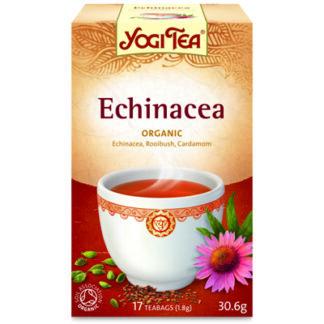 Echinacea Te 17p KRAV EKO