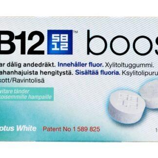 SB12 Boost Eucalyptus tuggummi 10 st